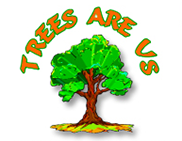 Trees Are Us